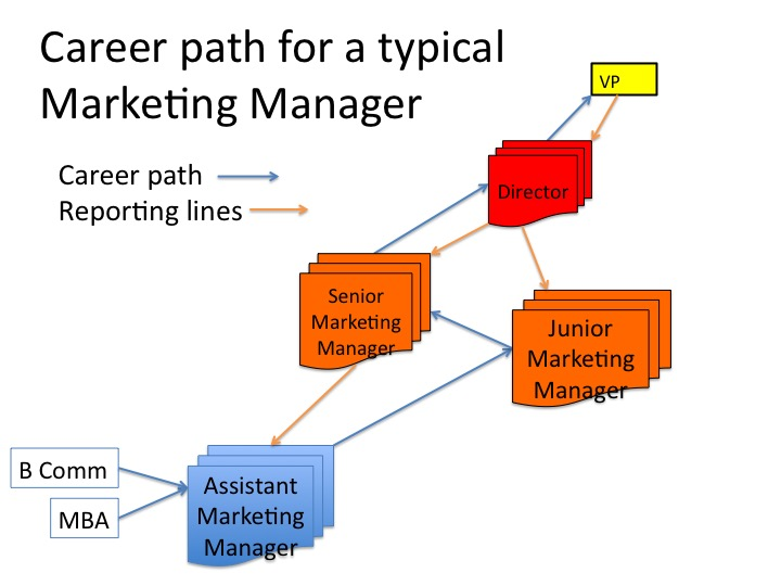 career path of a management accountant A management career path is not a straight line nor is it the same for everyone yet all management career paths have a starting point all have milestones along the way this page is the starting point for several management paths each path leads managers to what they need to know based on where.